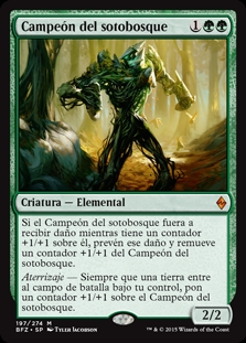 Campeón del sotobosque - Undergrowth Champion