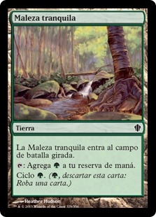 Maleza tranquila - Tranquil Thicket
