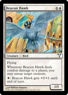 Halcón de almenara - Beacon Hawk