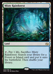 Bosque tropical brumoso - Misty Rainforest