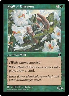 Muro de flores - Wall of Blossoms