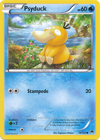 Psyduck (Common)